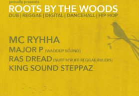 Roots by woods